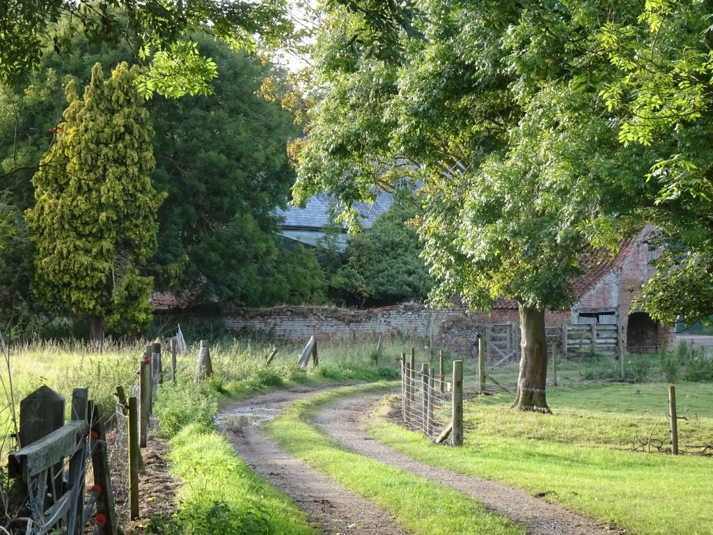 Country lane at Belleau - a forgotten corner of America's Christian heritage